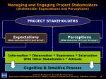 managing and engaging project stakeholders stakeholder expectations and perceptions