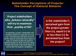 stakeholder perceptions of projects the concept of rational behavior