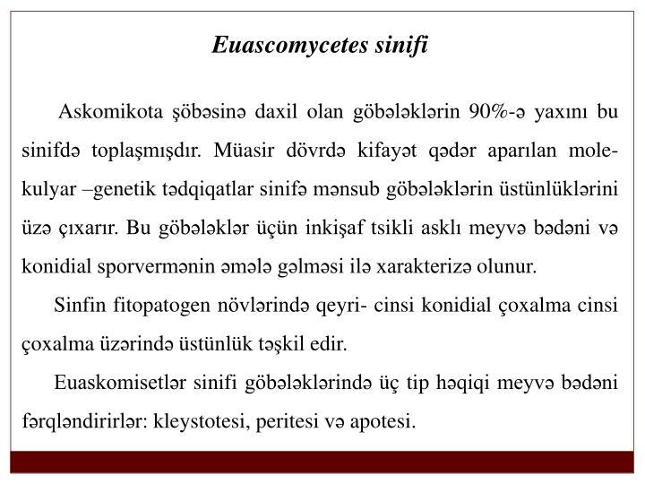 Euascomycetes