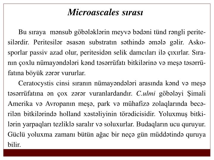 Microascales