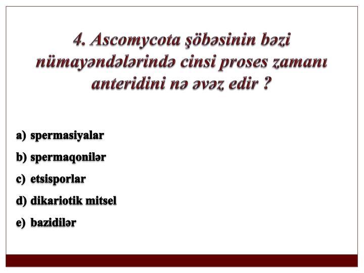 4. Ascomycota şöbəsinin bəzi nümayəndələrində cinsi proses zamanı anteridini nə əvəz edir