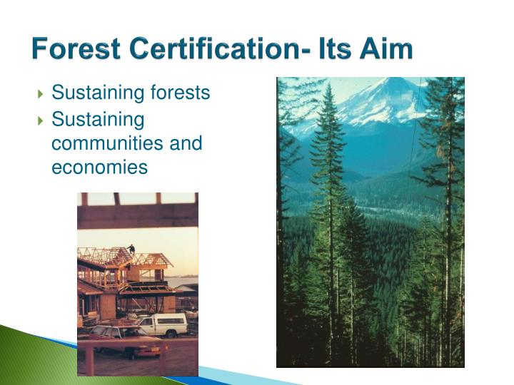 Forest Certification- Its Aim