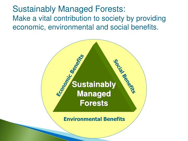 Sustainably Managed Forests: