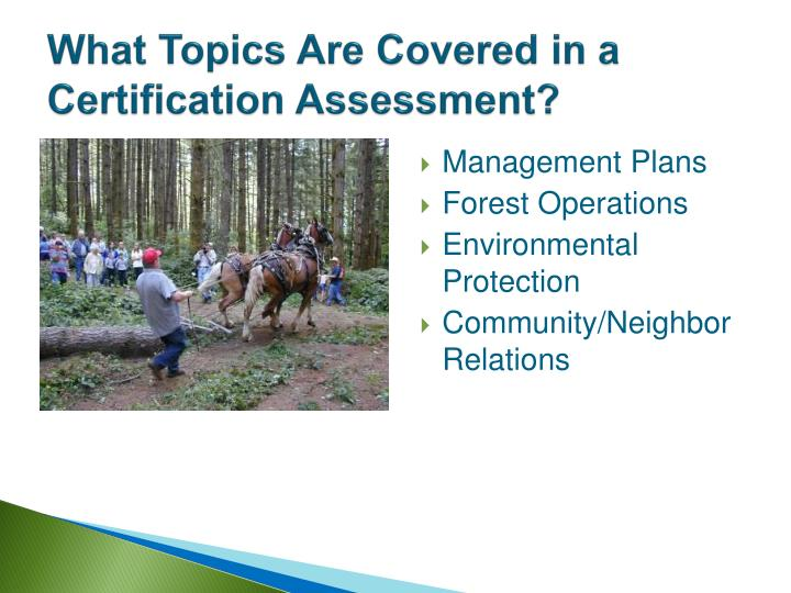 What Topics Are Covered in a Certification Assessment?