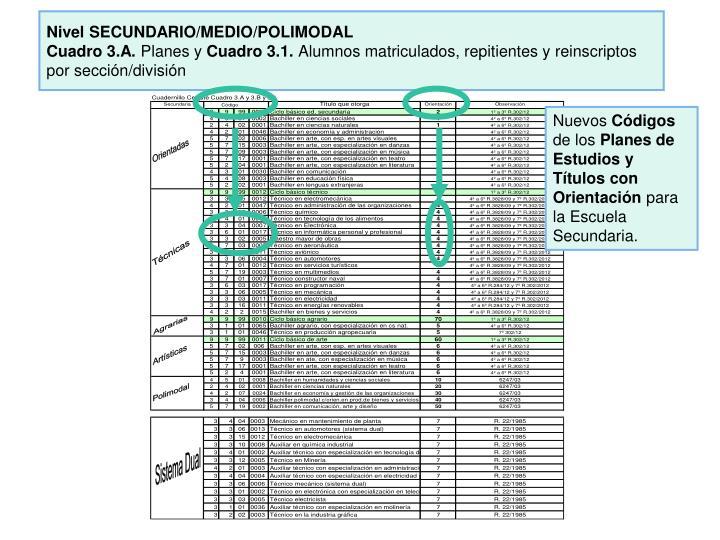 Nivel SECUNDARIO/MEDIO/POLIMODAL