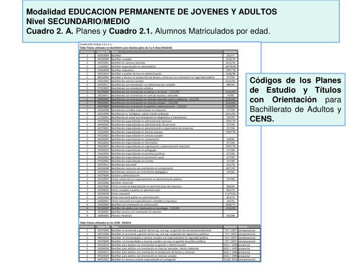 Modalidad EDUCACION PERMANENTE DE JOVENES Y
