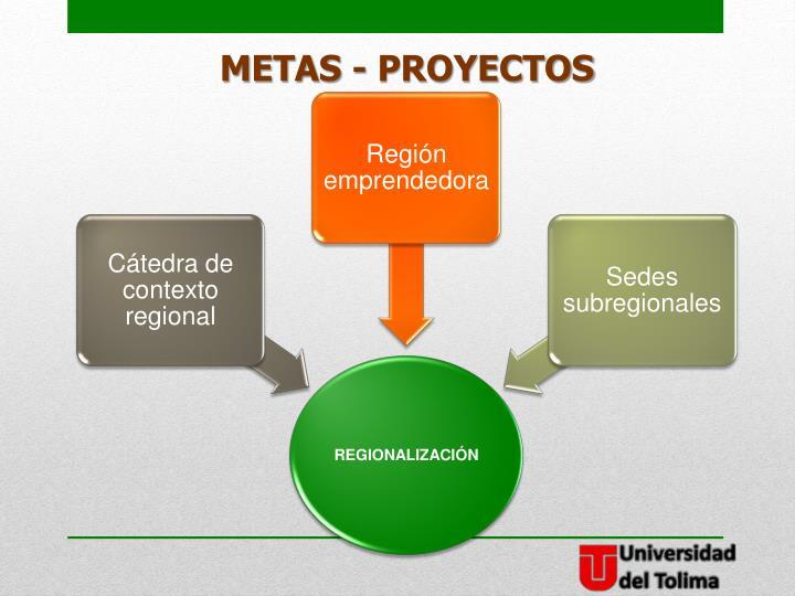 METAS - PROYECTOS
