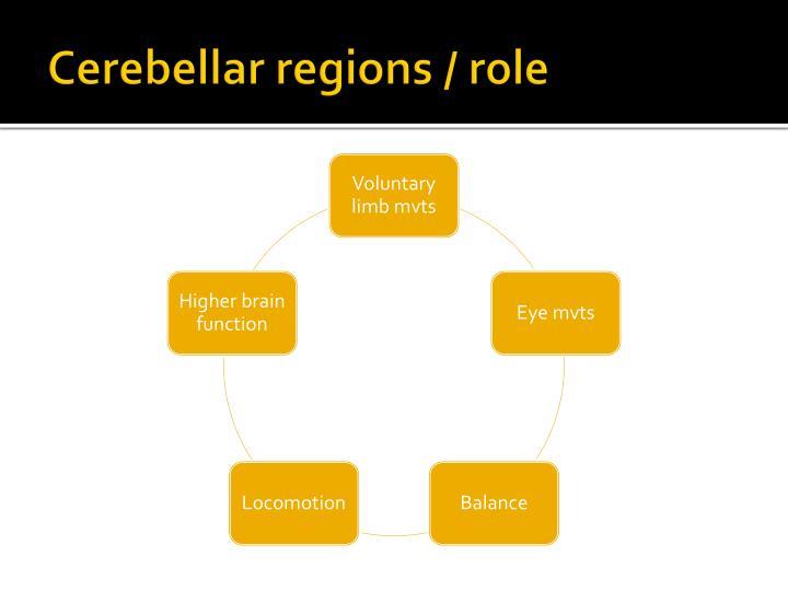 Cerebellar