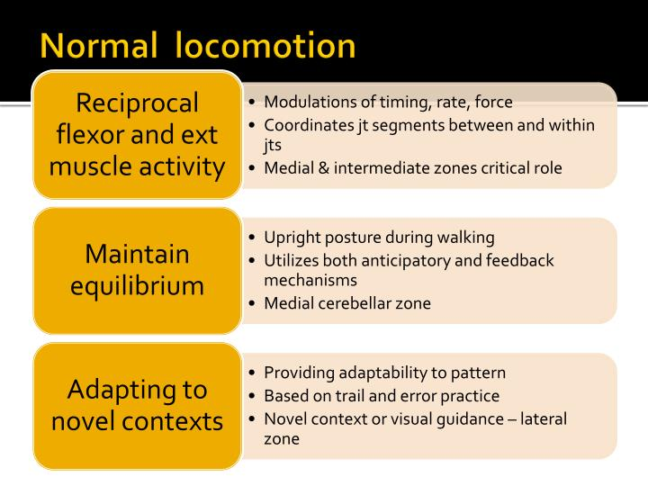 Normal  locomotion