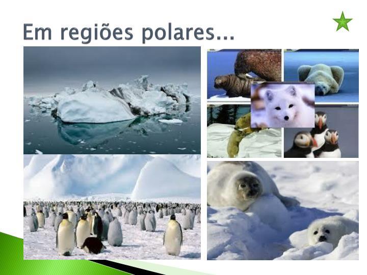 Em regiões polares...