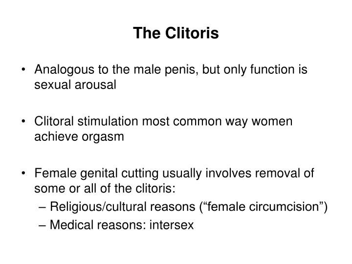 The Clitoris