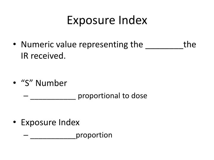 Exposure Index