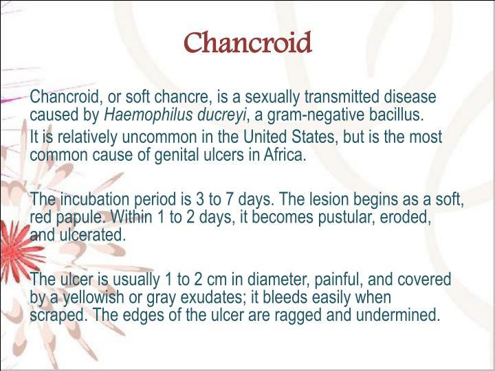 Chancroid