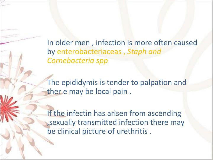In older men , infection is more often caused by