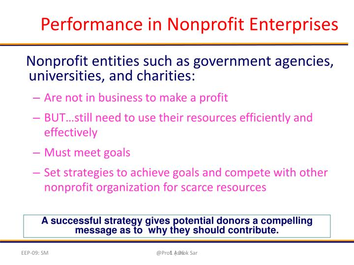 Performance in Nonprofit Enterprises