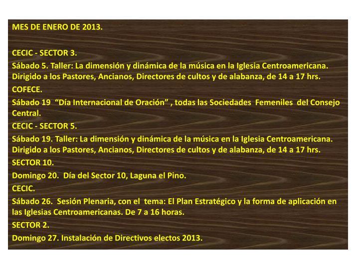 MES DE ENERO DE 2013.