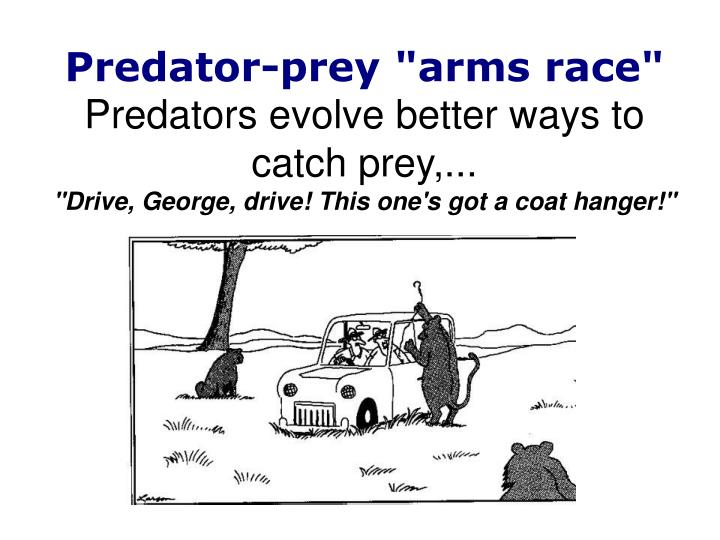 "Predator-prey ""arms race"""
