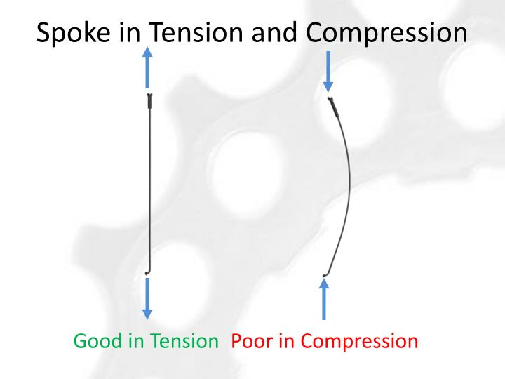 Spoke in Tension and Compression
