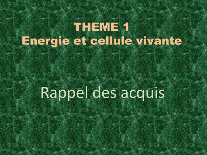 Theme 1 energie et cellule vivante