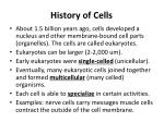 history of cells1
