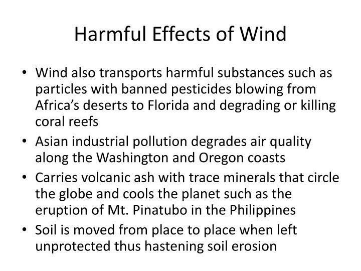 Harmful Effects of Wind