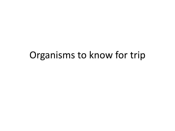 Organisms to know for trip