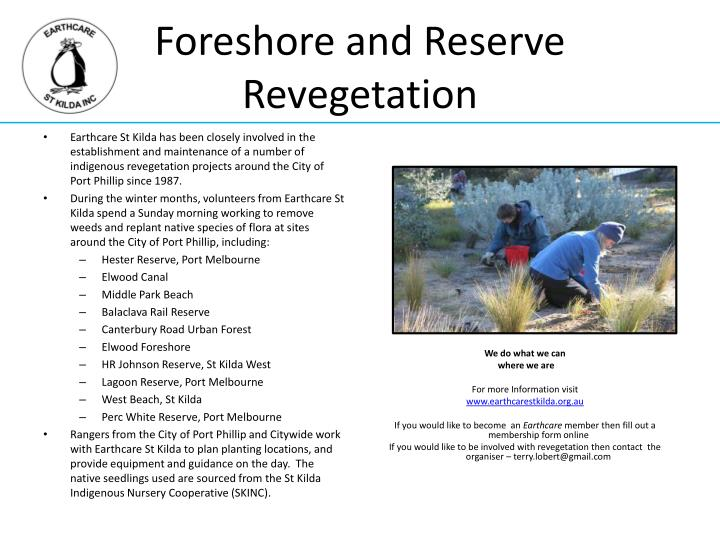 Foreshore and Reserve Revegetation
