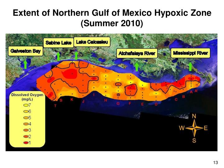 Extent of Northern Gulf of Mexico Hypoxic Zone (Summer 2010)