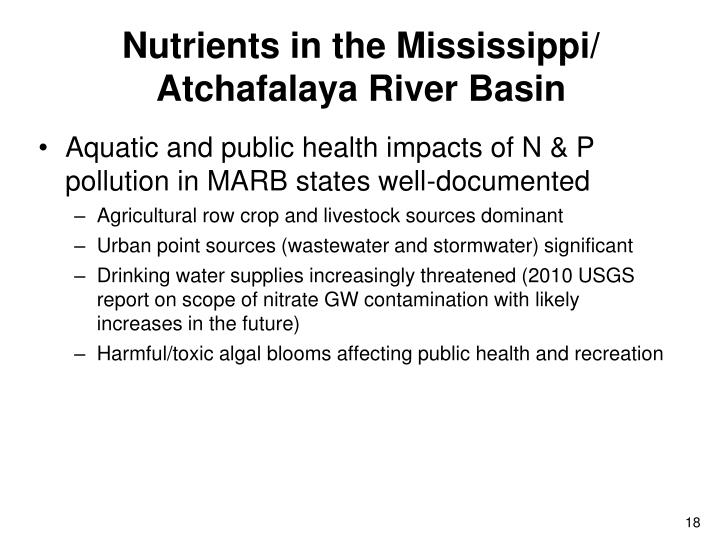 Nutrients in the Mississippi/ Atchafalaya River Basin