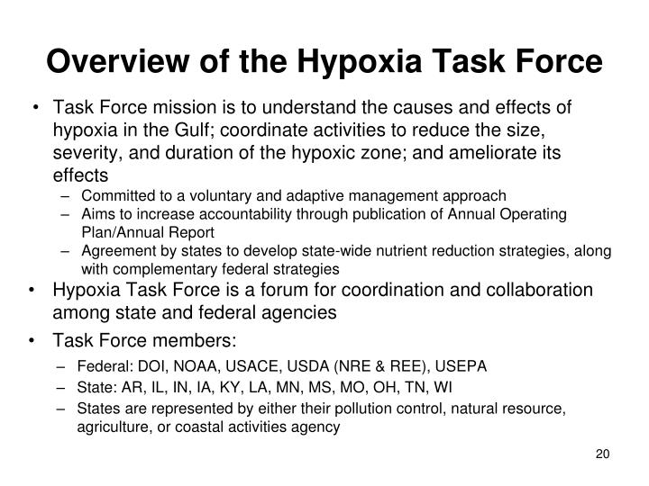 Overview of the Hypoxia Task Force