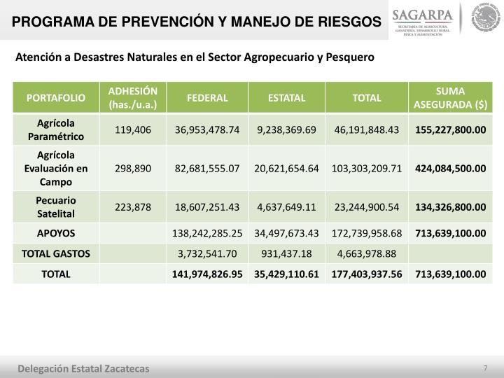 PROGRAMA DE PREVENCIÓN Y MANEJO DE RIESGOS