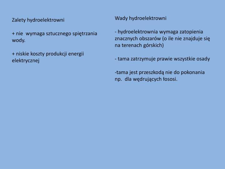 Wady hydroelektrowni