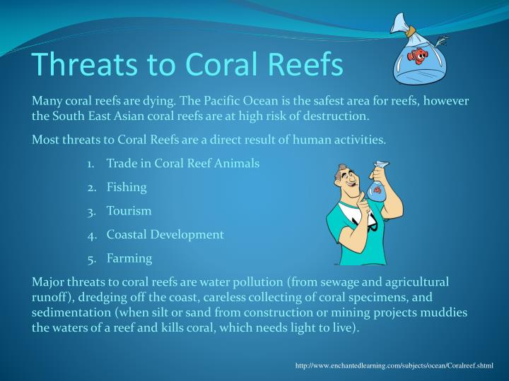 13 Threats to Coral Reefs – Effects