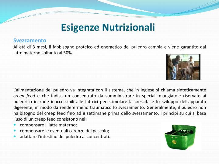 Esigenze Nutrizionali