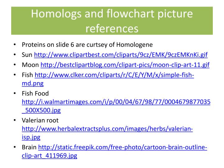 Homologs and flowchart picture references