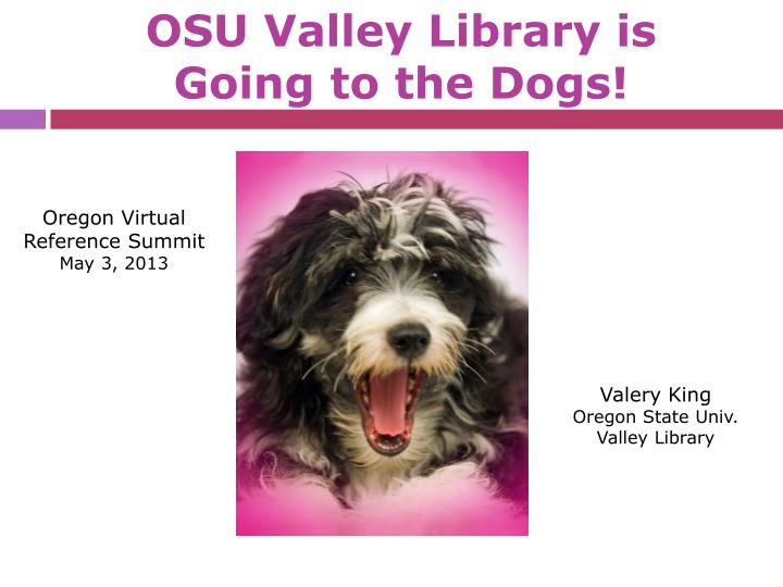Osu valley library is going to the dogs
