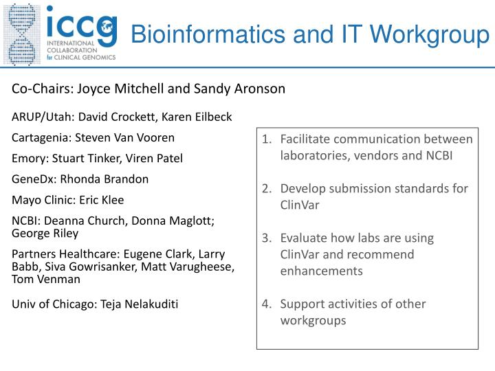 Bioinformatics and IT Workgroup