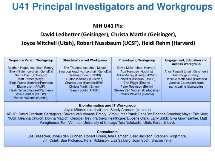 U41 Principal Investigators and Workgroups