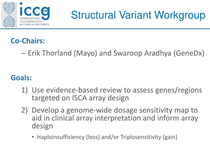 Structural Variant Workgroup
