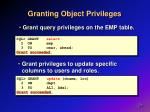 granting object privileges