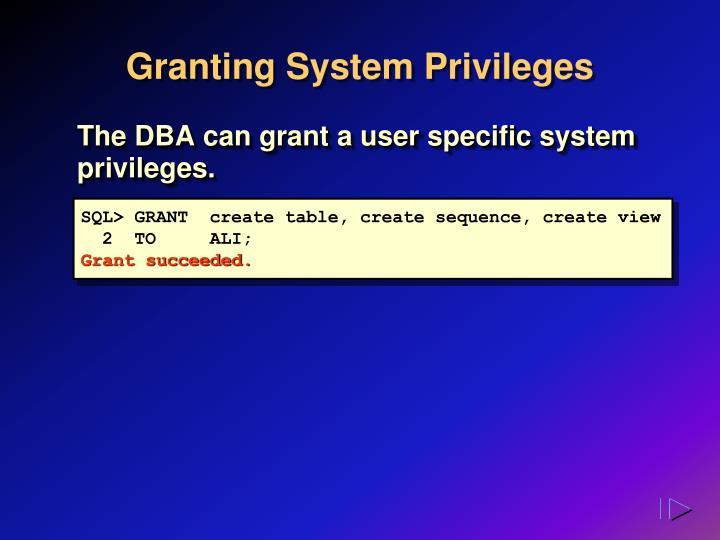 Granting System Privileges