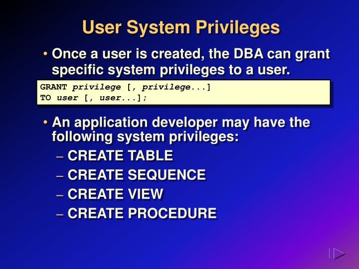 User System Privileges