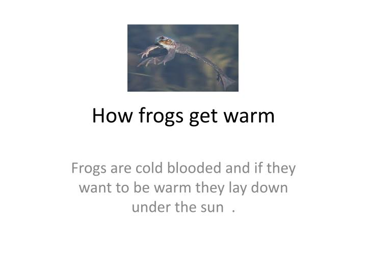 How frogs get warm
