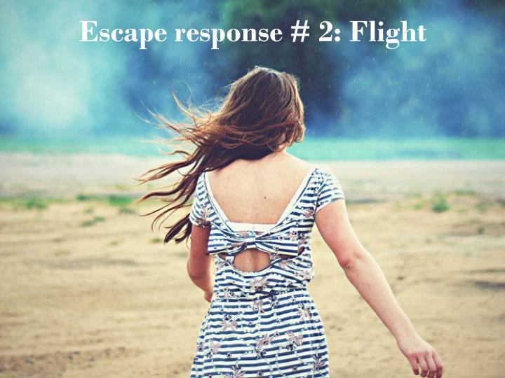 Escape response # 2: Flight