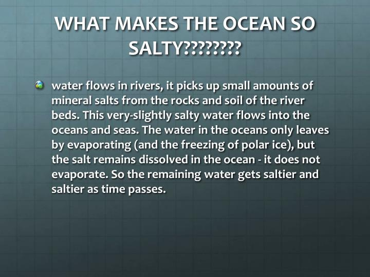 WHAT MAKES THE OCEAN SO SALTY????????