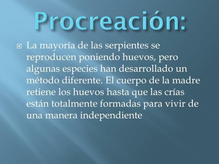 Procreación: