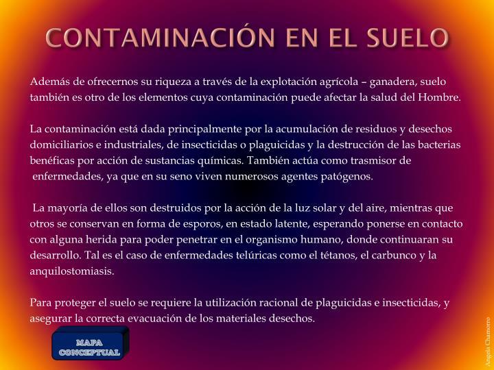 CONTAMINACIÓN EN EL SUELO