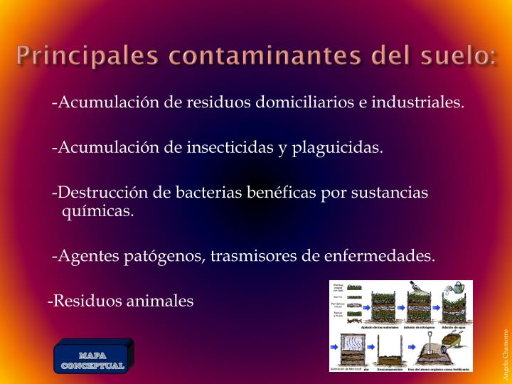 Principales contaminantes del suelo: