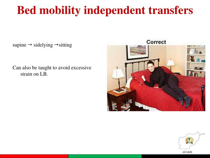 Bed mobility independent transfers