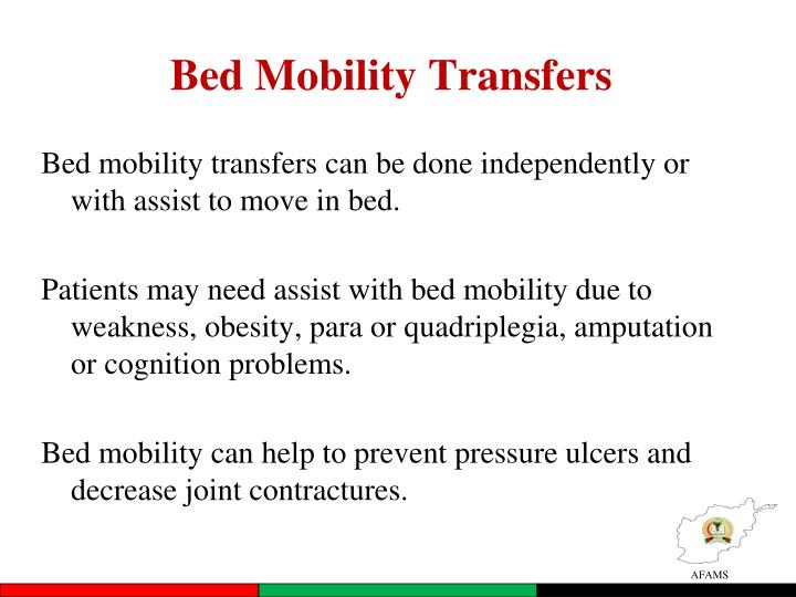 Bed Mobility Transfers